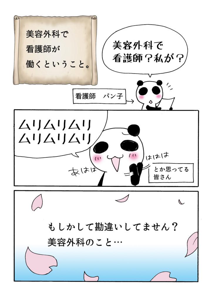「美容外科とんでもない勘違いを解決する!編」マンガ1ページ目