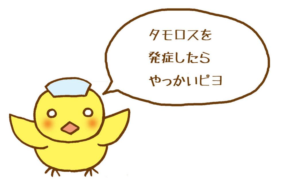 f:id:sibakiyo:20150820165126j:plain