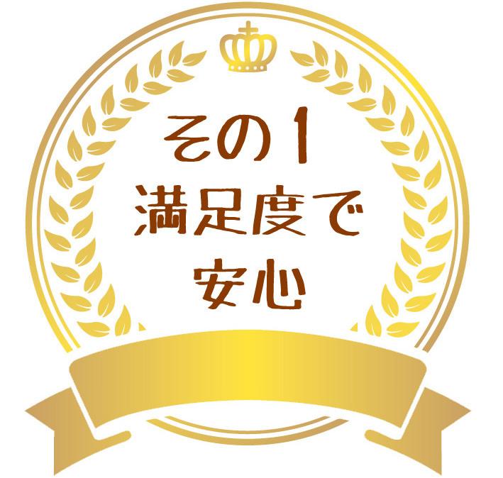 f:id:sibakiyo:20160208145845j:plain