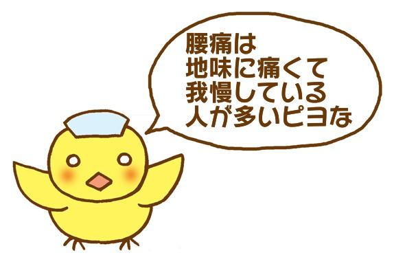 f:id:sibakiyo:20180531090930j:plain