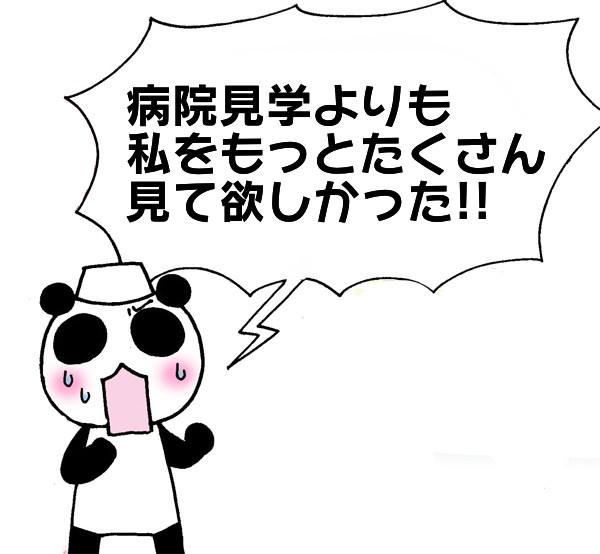 f:id:sibakiyo:20180613131533j:plain